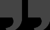brandvelocity icon